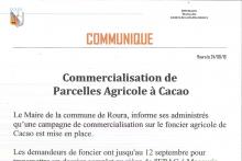 Cacao – Commercialisation de parcelles agricoles