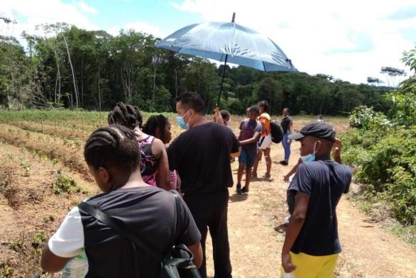 Des jeunes de Roura visite les champs à Cacao